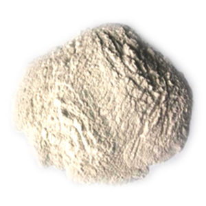 Methyl cellulose E461